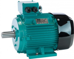 Brook Crompton-11KW-Electric Motor-11KWD1602PFT